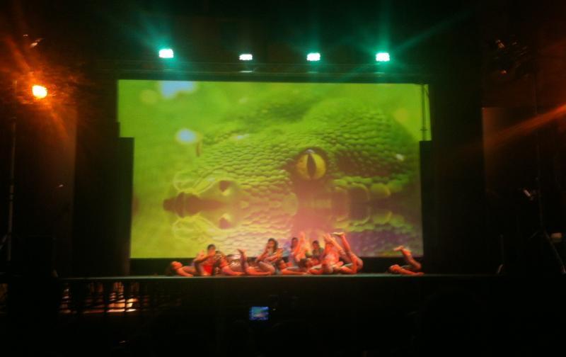 Il palco allestito e la videoproiezione
